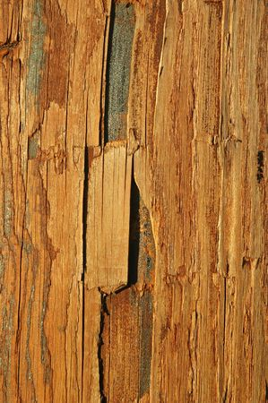 splintered: close-up of stained and splintered wood Stock Photo