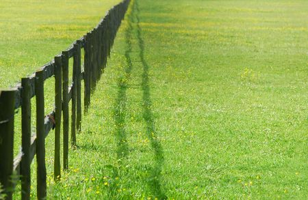 wooden fencing diminishing perspective Stock Photo - 3109614