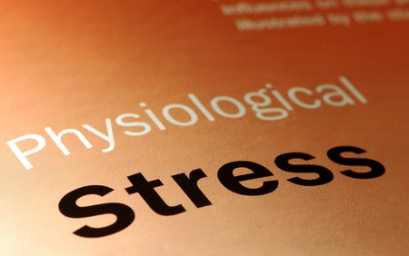 physiological stress and health-care concept Stock Photo - 3947651