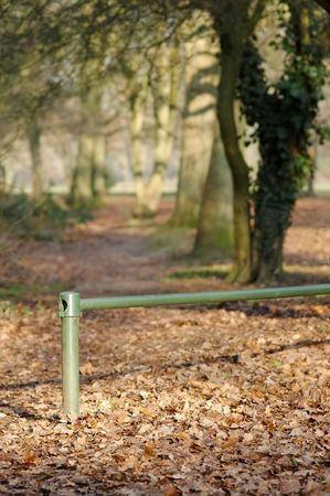 copse: railing boundary to a woodland copse area