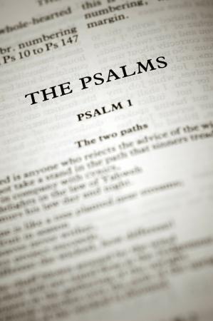 salmo: le scritture di Salmi biblici