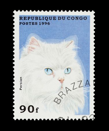 mail stamp printed in the Congo featuring a white pedigree Persian cat photo