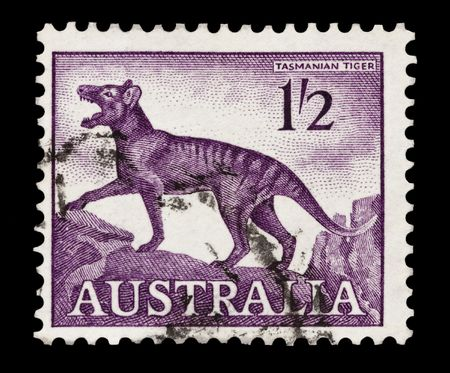 mail stamp printed in Australia featuring the extinct Tasmanian Tiger Stock Photo