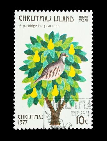 kuropatwa: Wyspa Bożego Narodzenia poczty sygnatura goÅ›cinnie darem pierwszy Twelve Days of Christmas Zdjęcie Seryjne