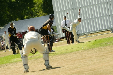 cricket game: Eversley, United Kingdom - June 3, 2011: Local village team bowling against the mighty Lashings World XI at a charity pro-am event in Eversley, UK Editorial