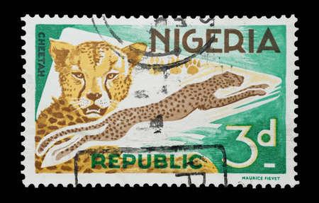big cat: Mail stamp printed in Nigeria featuring a leaping cheetah big cat, circa 1965