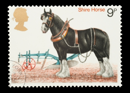 shire horse: United Kingdom - circa 1978: Mail stamp printed in the UK featuring a traditional working Shire Horse and plough.