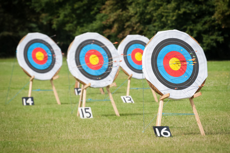 archery targets at various distances on a range