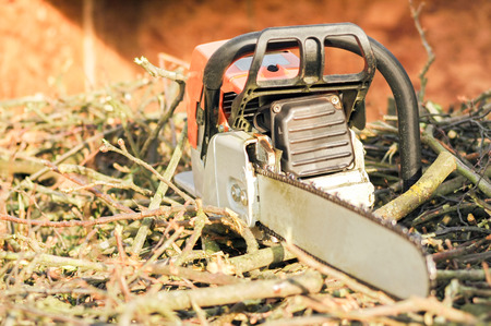 forestry industry: close-up of a chainsaw on wood cuttings