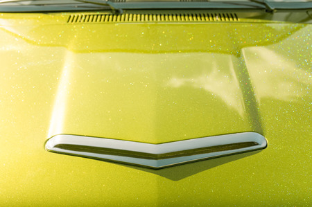 autos: lime green glitter covered vehicle hood abstract