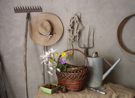 Still life of old garden tools, baskets of flowers and cherries photo