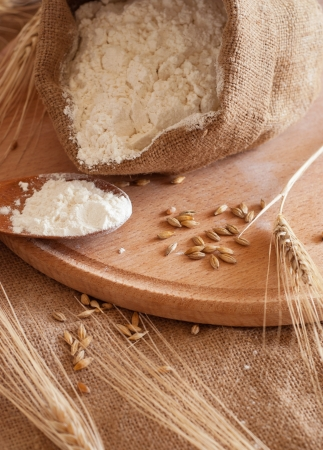 wheat flour: ingredients for the baking of bread