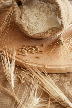 Still life with Wheat & Meal Banco de Imagens - 17213966
