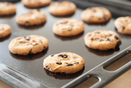 chocolate chip cookie: Chocolate cookies on the baking