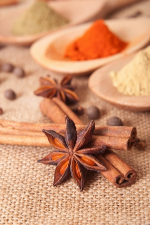 Composition of Spices photo