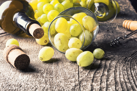 white grape: Bottle of white wine, grape and corks on old wooden background