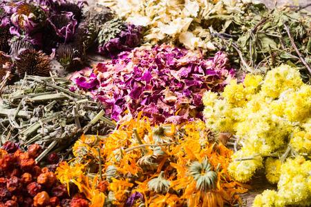 Nature medicine . Variation of herbs  background .