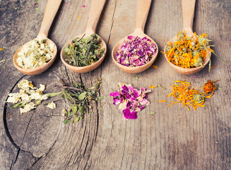 Nature medicine . Herbs in wooden spoon . Stock Photo - 46077083