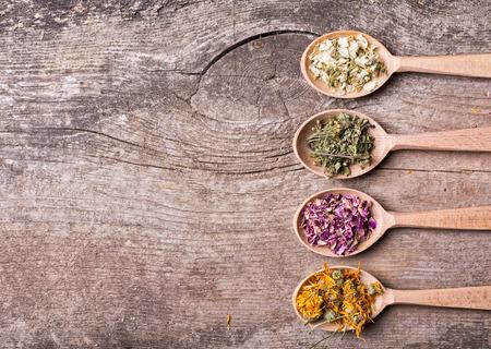 medicamentos: La medicina natural. Hierbas en cuchara de madera.