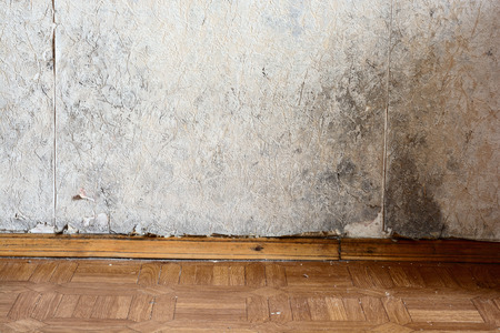Black mold buildup in the corner of an old house