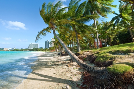 guam: Beach of Guam Tumon Bay