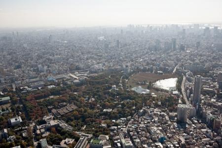 riverine: Tokyo Ueno sky
