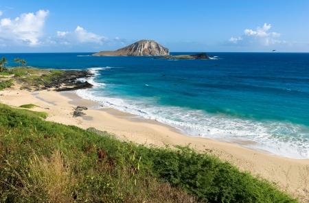 i hope: I hope Oahu Eastern Rabbit Island