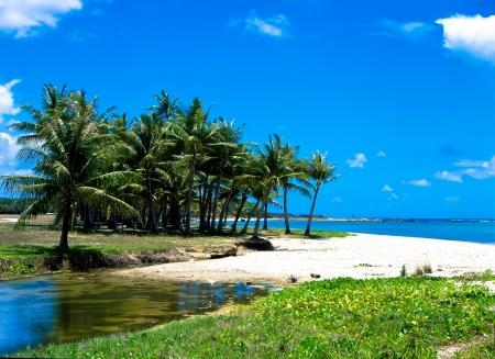 Coast of Guam