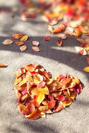 defoliation: Defoliation of Heart