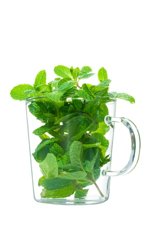 heatproof: Mint leaves were harvested Stock Photo
