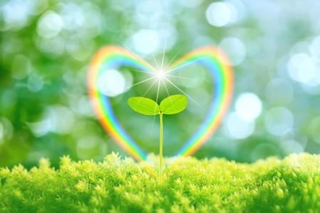 Heart and rainbow Futaba Stock Photo