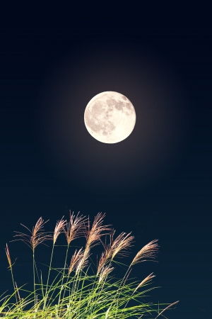 thinness: Full moon thinness and Stock Photo