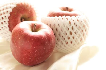 honey apple: Aomori Prefecture honey apple