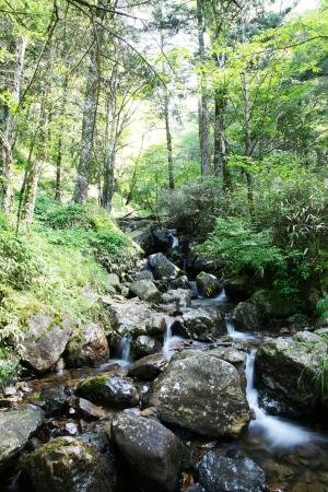 springwater: Mountain stream Stock Photo