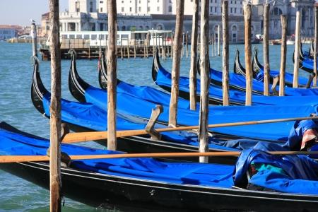 riverine: Gondolas of Venice