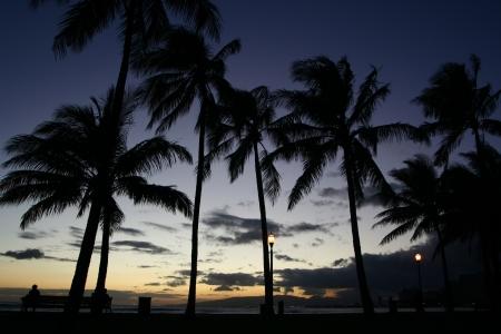 waikiki beach: Waikiki beach at sunset Stock Photo