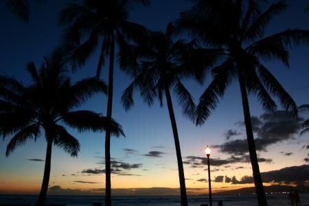 waikiki beach: Dusk of Waikiki Beach