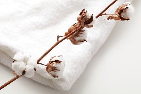 toweling: Toweling cotton and cotton Stock Photo