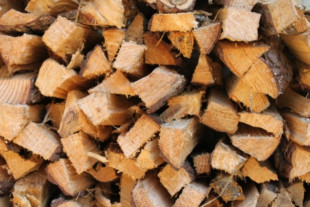 timberland: Salary