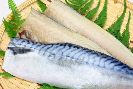 mackerel: Mackerel Stock Photo
