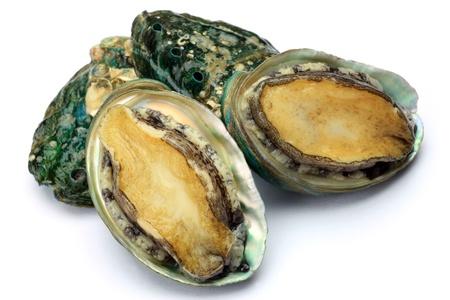 plurality: Abalone