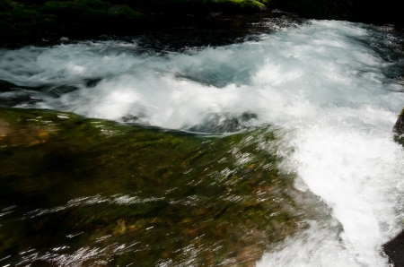 riverine: Mountain stream of Kikuchi Valley
