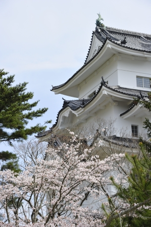 iga: Iga Ueno Castle 2 of spring Stock Photo