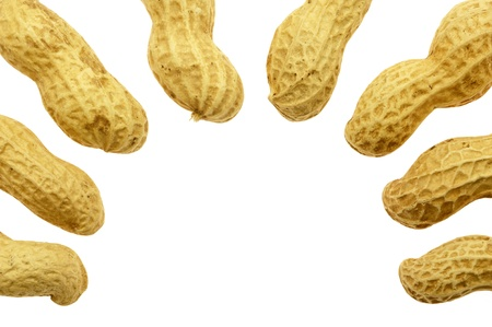 groundnut: Groundnut