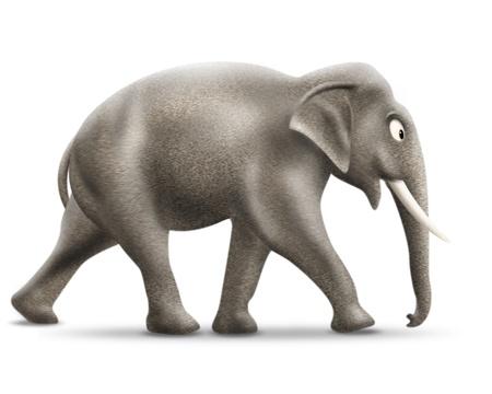 living organism: Elephant Stock Photo