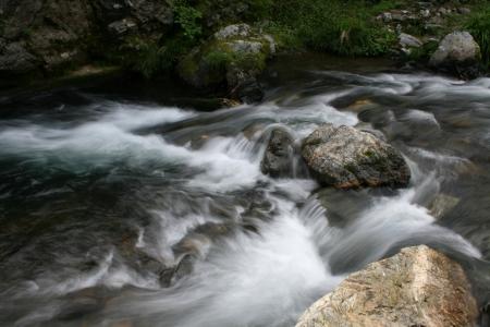 riverine: Clear stream of Japan