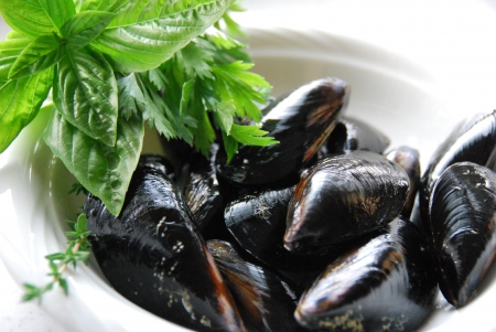 Herbs and mussels photo