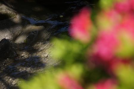 riverine: Flow