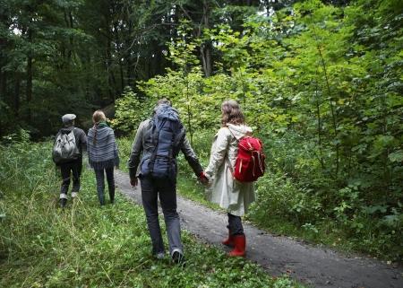 четыре человека: Четыре Люди, Пешие прогулки в лес