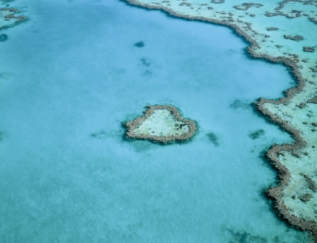 Heart-shaped coral reef photo